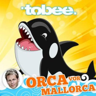 Orca vor Mallorca